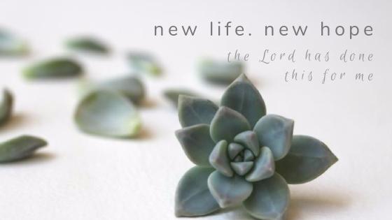 New Life//New Hope